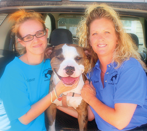 Pictured are newly-hired Shelter Assistant Dayna Wells, Bowser and Animal Control Officer Renee Sosebee pose for the camera on Bowser's last day in Panhandle. Bowser was confiscated by the local law enforcement and placed in the care of Panhandle Animal Control Shelter. Sosebee and Wells were able to place Bowser in a Pitbull Rescue Center where he is well taken care of and loved.