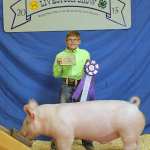 Christopher McLaughlin of Panhandle 4-H exhibited the  Reserve Champion Lamb