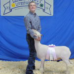Zane Hackett of Panhandle FFA exhibited the  Reserve Champion Lamb